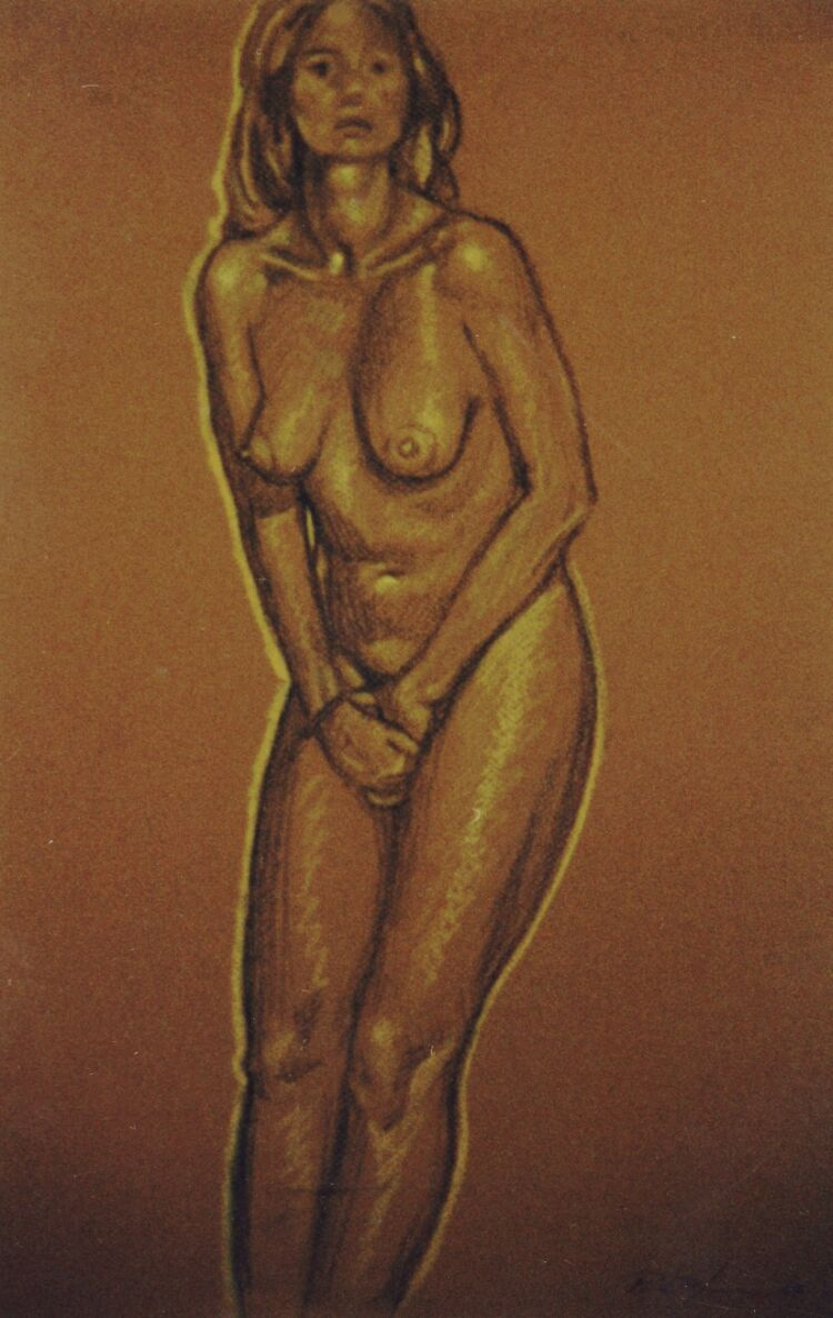 Drawing, Conte crayons on pastel paper. Nude-2. 65 x 50 cm (26 x 20 in)