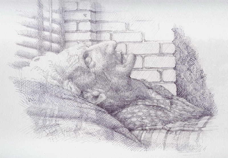 Drawing, ball-point pen on watercolour paper. I liked the light in this scene of an old woman sleeping so well, that I paused the DVD I was watching & drew it!