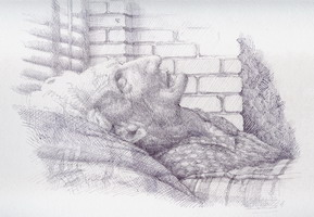 Drawing, Old woman sleeping, ball-point pen. 30 x 40 cm