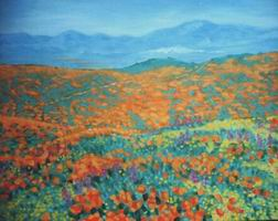 Painting, oil on canvas- California poppy field. 65 x 80cm