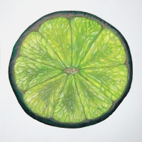 Lime slice. Oils on paper 25 x 25 cm