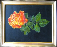 Rose, oils on board. 8 x 10 inches (20 x 26 cm)