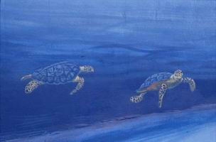 Detail-turtles.