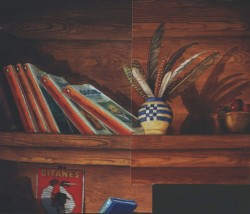 A shot looking above & below a top shelf with books from the Penguin Classics series & a vase holding feathers.