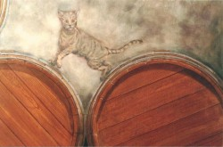 Cat among the barrels