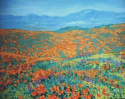 Landscape. Oils on canvas. Southern California poppy fields 26 x 32 in