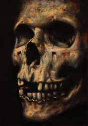 Skull. Oils on canvas-panel 30 x 21 cm (12 x 8 inches)
