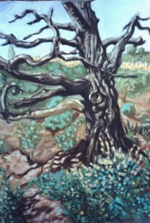 Burnt Chestnut tree. Alpujarras, Granada, oils on pastel paper. 60cm x 40cm (24in x 16in)