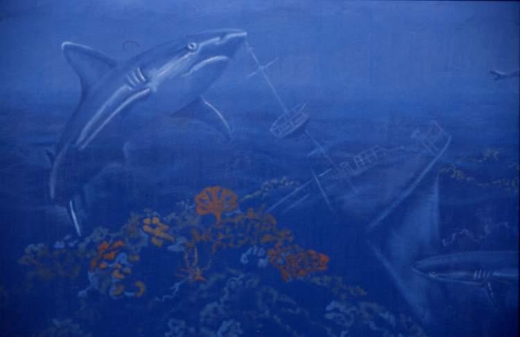 Shark & ship 2