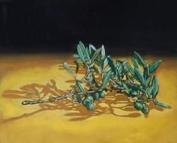 Olive branch. Oils on panel  30 x 45 cm