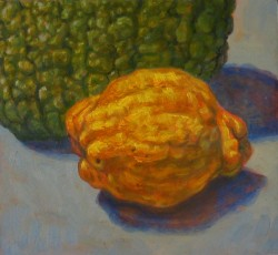 Textures: quince & gourd, oils on panel  feb 2012- 20 x 22 cm