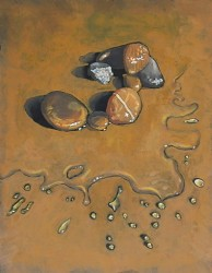 Wet pebbles, oil on panel  45 x 30 cm