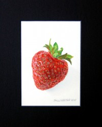 Strawberry. Oils on paper 40 x 30 cm