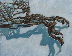 Dead branch from a thyme bush, oil painting on panel 30 x 45 cm
